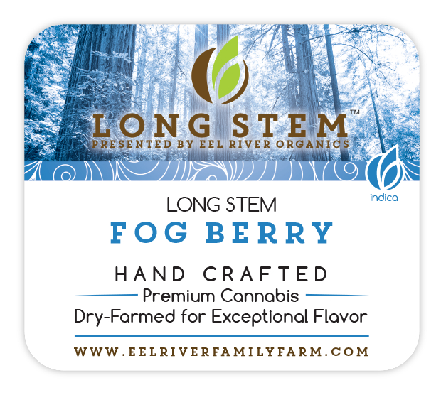Long Stem Fog Berry